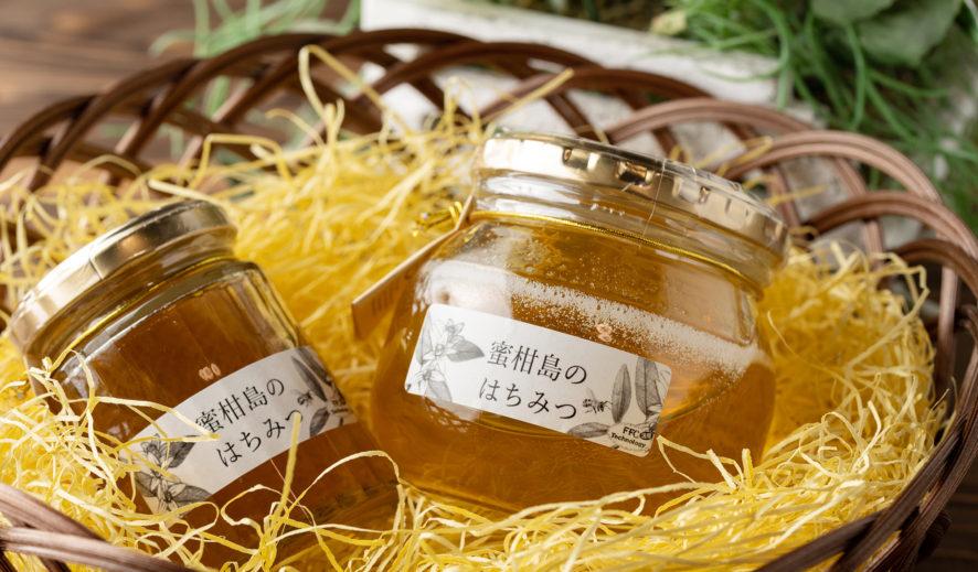 山口市「ときつ養蜂園」さんで本物のハチミツ撮影。